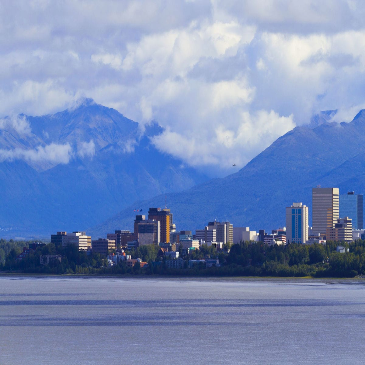 Anchorage Alaska Chiropractic Practice for Sale