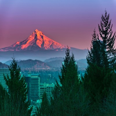 Chiropractic Practice for Sale in Portland Oregon