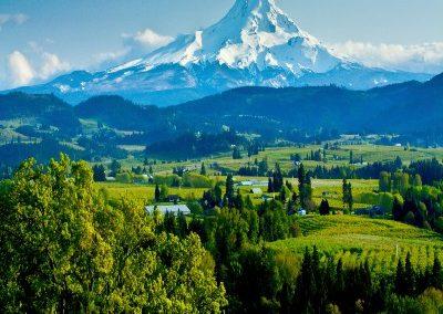 Gonstead Chirorpactic practice for sale in Eugene Oregon