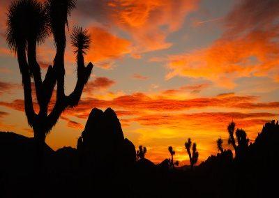 chiropractic practice for sale in Antelope Valley California area