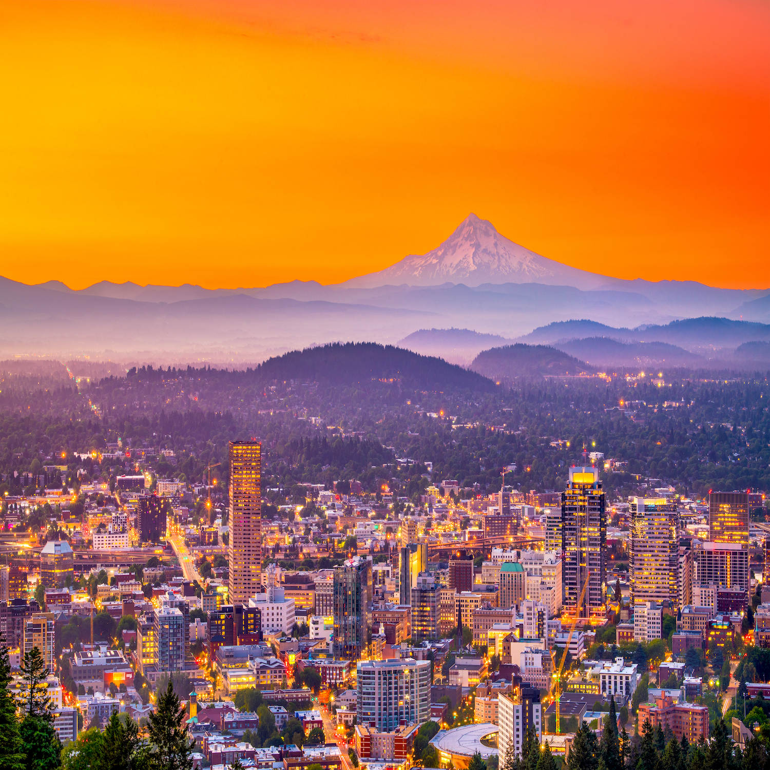 Personal Injury Chiropractic Practice for Sale in Portland Oregon