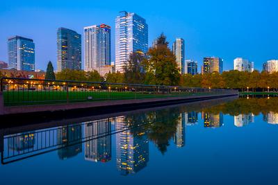 Chiropractic Practice for Sale in Bellevue Washington